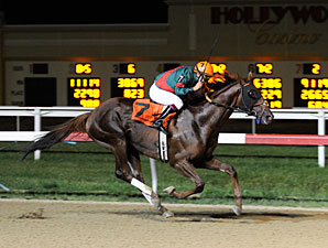 Toby's Corner wins the 2012 Mountainview.