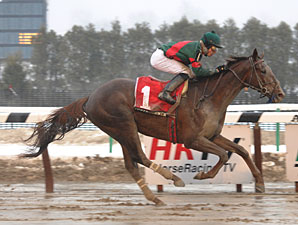 Toby's Corner wins the 2011 Whirlaway