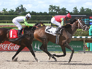 Too Experience wins the 2010 Seacliff Stakes.