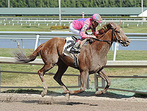 Top Billing wins his allowance race 1/25/2014.