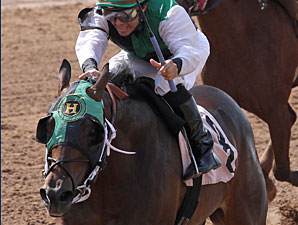 Top Cat Boogie wins the 2011 LA Cup Juvenile.