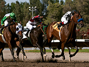 Top Kisser wins the 2014 California Governor's Cup Handicap.