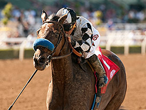 Top Kisser wins the 2014 L. A. Woman Stakes.