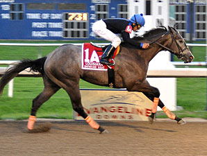 Toro Bravo wins the 2010 Shine Stakes.