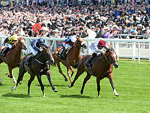 Toronado wins the 2014 Queen Anne Stakes.