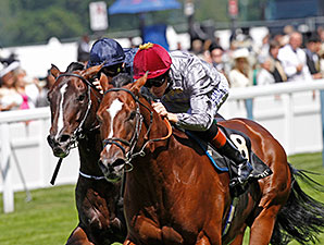 Toronado wins the 2014 Queen Anne Stakes.