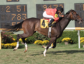 Tough Issie wins the 2011 Elge Rasberry Stakes.