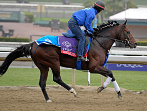 Trailblazer - Breeders' Cup 2012