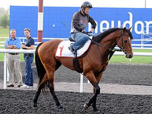 Transcend - Dubai 2012