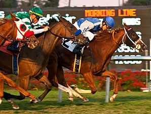 Travesura wins the 2012 Miesque.
