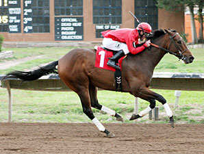 Treacherous wins the New Mexico State Fair Handicap.
