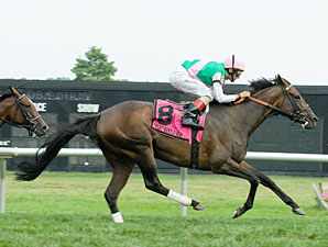 Treat Gently wins the 2010 Robert G. Dick Memorial.