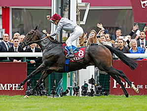 Treve wins the Arc de Triomphe 10/5/2014.
