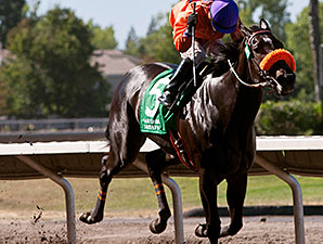 Tribal Gal wins the 2014 Oak Tree Distaff Stakes.