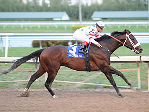 Trickmeister wins the 2011 Harlan's Holiday.