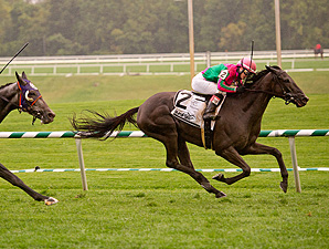 Tricky Hat wins the 2013 Laurel Turf Cup.