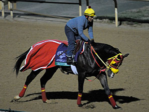 Trinniberg Churchill Downs, Oct 29, 2011.
