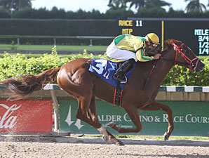 Trip for A. J. wins the 2010 Nancy's Glitter.
