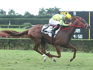 Trip for A. J. wins the 2010 Ms Brookski Stakes.