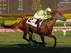 Trip for A. J. wins the 2011 SM Filly & Mare Turf.