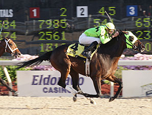 True Course wins the 2009 B-Connected.