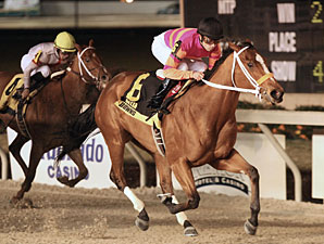 Truth and Justice wins the 2009 My Trusty Cat Stakes.