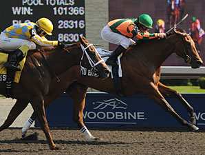 Tu Endie Wei wins the 2011 Ontario Debutante.