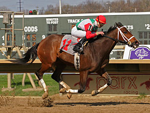 Tujoes wins the 2013 Lyman Handicap.
