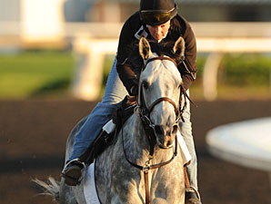 Turallure, Woodbine September 17, 2011.
