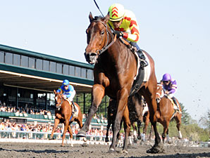 Turbulent Descent wins the 2011 Beaumont Stakes.