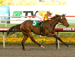 Turbulent Descent wins the 2010 Moccasin Stakes.