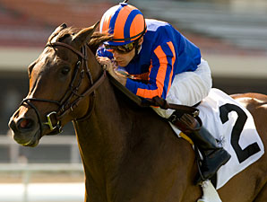 Turning Top wins the 2010 Beverly Hills.