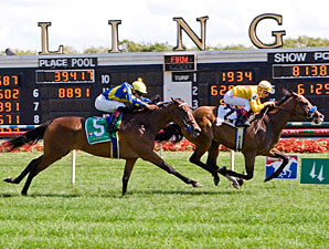 Tuscan Evening wins the 2010 Modesty.