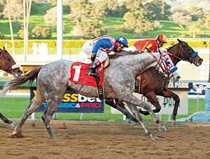 Tweebster, gray, San Fernando Stakes.