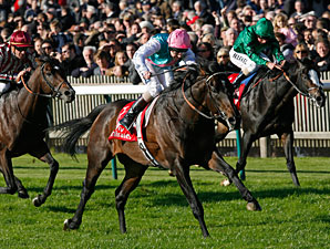 Twice Over wins the 2010 Champion Stakes.