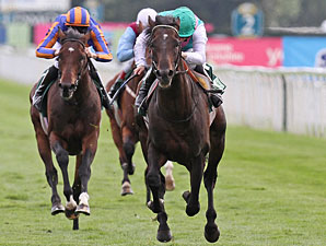 Twice Over wins the Juddmonte International Stakes