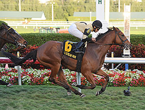Twilight Eclipse wins the 2014 Mac Diarmida Stakes.