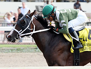 Two T's At Two B wins the 2012 Florida Stallion Stakes Dr. Fager Division.