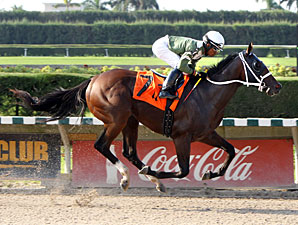 Two T's At Two B wins the 2012 Frank Gomez Memorial Stakes.