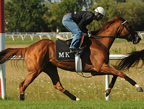 Ultimate Destiny - Woodbine, August 2, 2012.