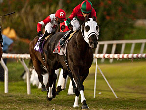 Ultimate Eagle wins the 2011 Hollywood Derby.