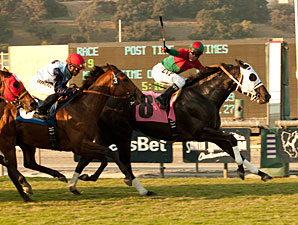 Ultimate Eagle wins the 2011 Oak Tree Derby.