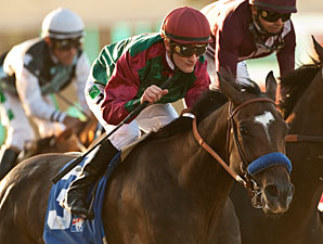 U'narack wins the 2013 Real Good Deal Stakes.