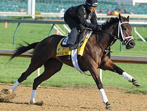 Uncle Mo - Churchill Downs May 5, 2011.