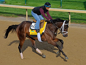Uncle Mo - Churchill Downs April 28, 2011.