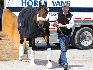 Uncle Mo arrives at Churchill Downs on April 18, 2011.