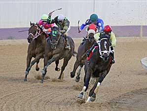 Uncle Todd wins the 2014 Webb Snyder Charles Town Dash Stakes.