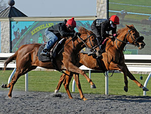 Undrafted (outside) works at Keeneland on April 6, 2013.