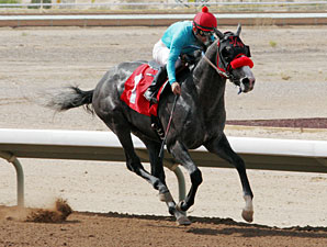 Unfettered wins the 2013 SunRay Park Casino Handicap.