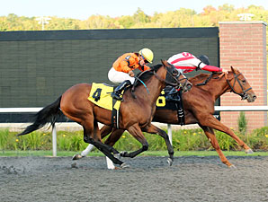 Unhedged wins the 2012 Presque Isle Debutante Stakes.